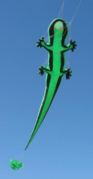 rkc-gecko